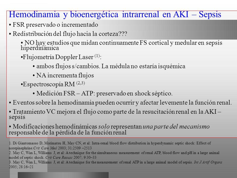 Hemodinamia y bioenergética intrarrenal en AKI – Sepsis FSR preservado o incrementado Redistribución del flujo hacia la corteza??? NO hay estudios que