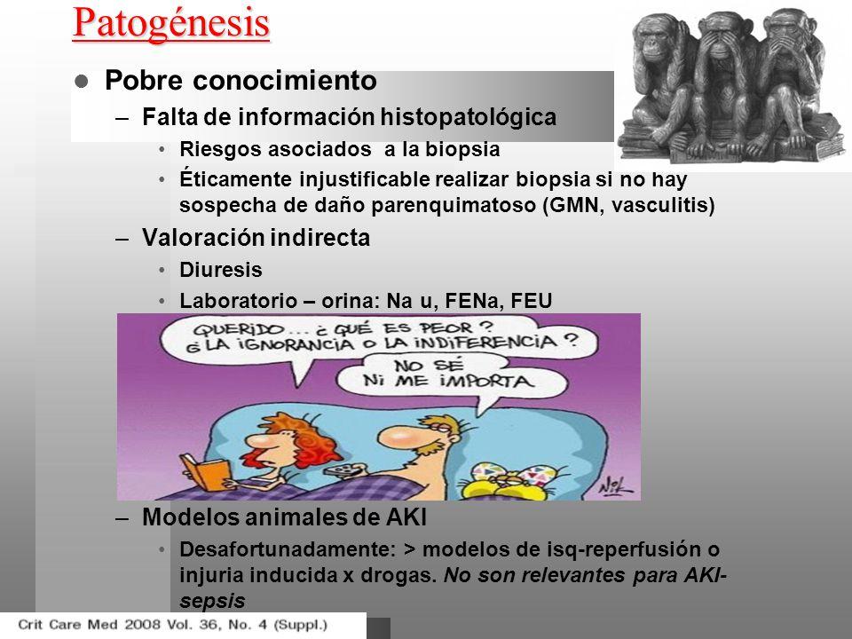 Patogénesis Pobre conocimiento –Falta de información histopatológica Riesgos asociados a la biopsia Éticamente injustificable realizar biopsia si no h