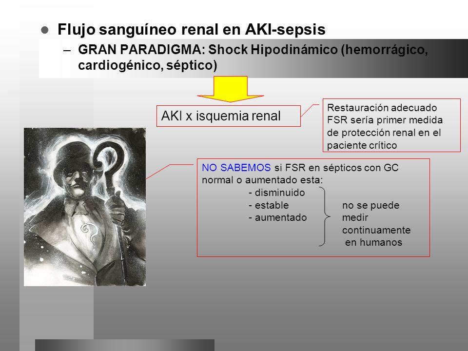 Flujo sanguíneo renal en AKI-sepsis –GRAN PARADIGMA: Shock Hipodinámico (hemorrágico, cardiogénico, séptico) AKI x isquemia renal Restauración adecuad