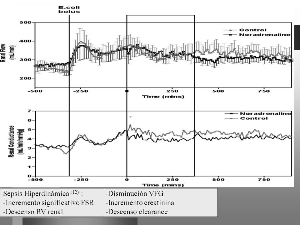 Sepsis Hiperdinámica (12) : -Incremento significativo FSR -Descenso RV renal -Disminución VFG -Incremento creatinina -Descenso clearance