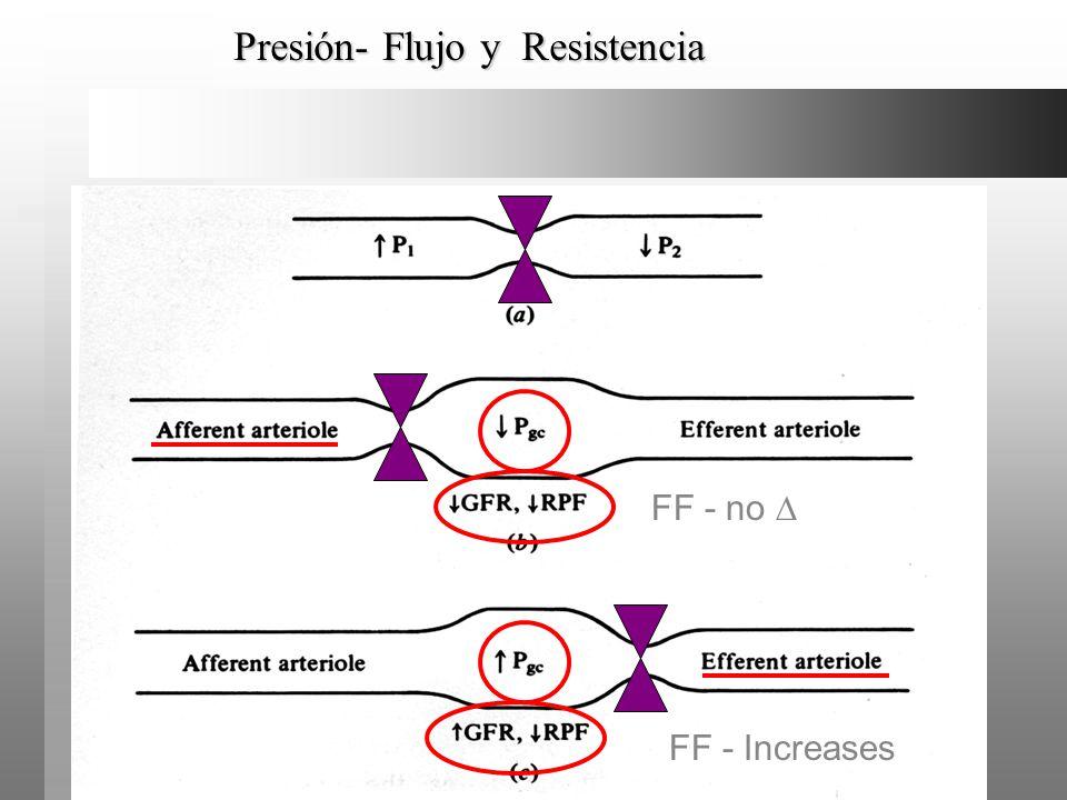 Presión- Flujo y Resistencia FF - no FF - Increases