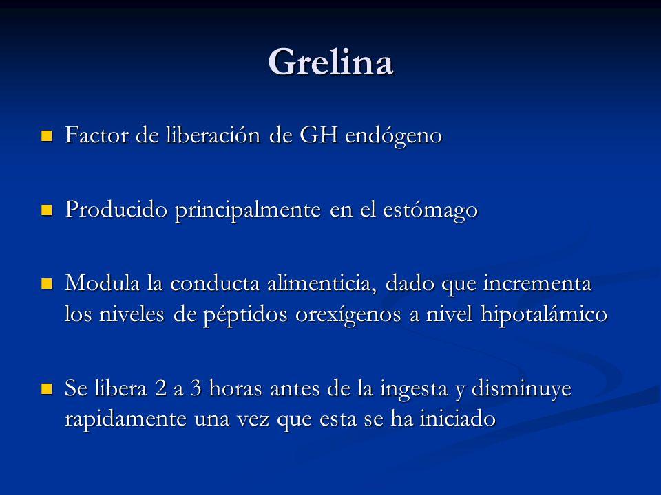 Grelina Factor de liberación de GH endógeno Factor de liberación de GH endógeno Producido principalmente en el estómago Producido principalmente en el estómago Modula la conducta alimenticia, dado que incrementa los niveles de péptidos orexígenos a nivel hipotalámico Modula la conducta alimenticia, dado que incrementa los niveles de péptidos orexígenos a nivel hipotalámico Se libera 2 a 3 horas antes de la ingesta y disminuye rapidamente una vez que esta se ha iniciado Se libera 2 a 3 horas antes de la ingesta y disminuye rapidamente una vez que esta se ha iniciado