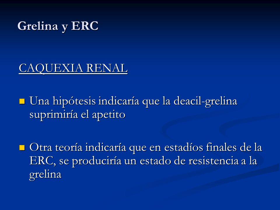 Grelina y ERC CAQUEXIA RENAL Una hipótesis indicaría que la deacil-grelina suprimiría el apetito Una hipótesis indicaría que la deacil-grelina suprimi