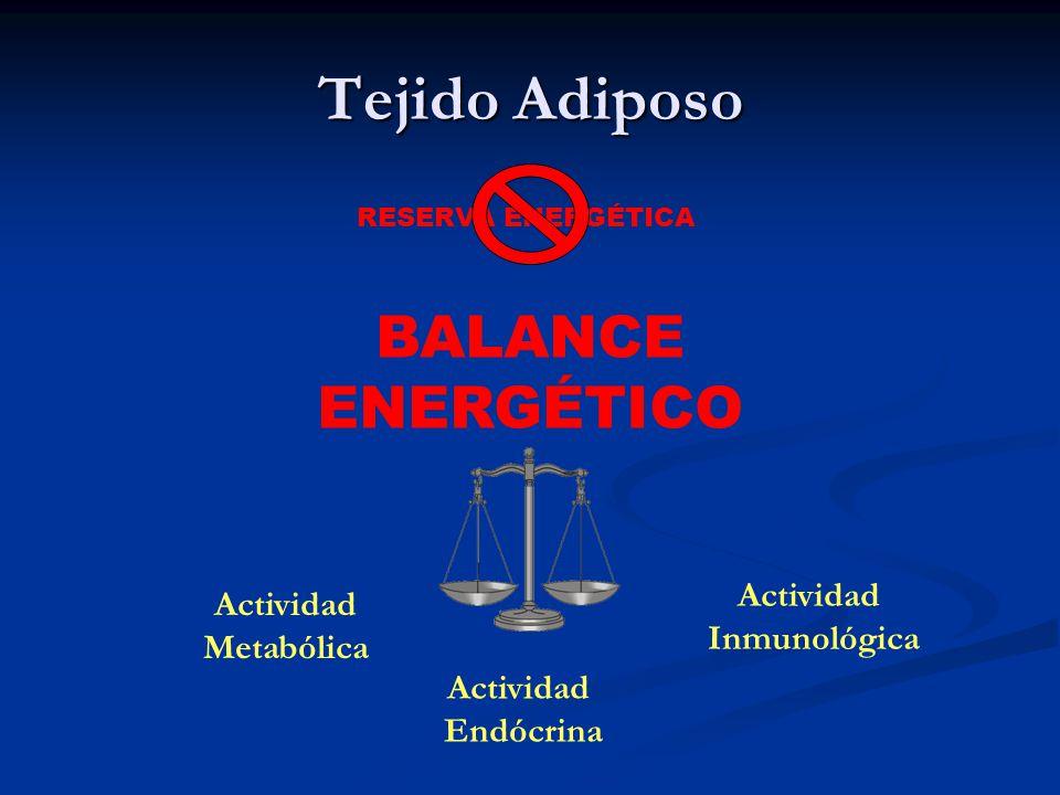 Tejido Adiposo RESERVA ENERGÉTICA BALANCE ENERGÉTICO Actividad Metabólica Actividad Endócrina Actividad Inmunológica