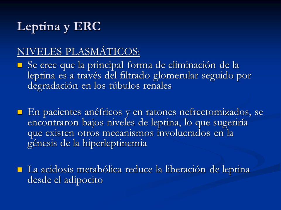 Leptina y ERC Las concentraciones de leptina en pacientes con ESRD, no se correlacionaron con marcadores de función renal residual (por ejemplo, creatinina) Las concentraciones de leptina en pacientes con ESRD, no se correlacionaron con marcadores de función renal residual (por ejemplo, creatinina) Los niveles pre y postdiálisis son similares Los niveles pre y postdiálisis son similares