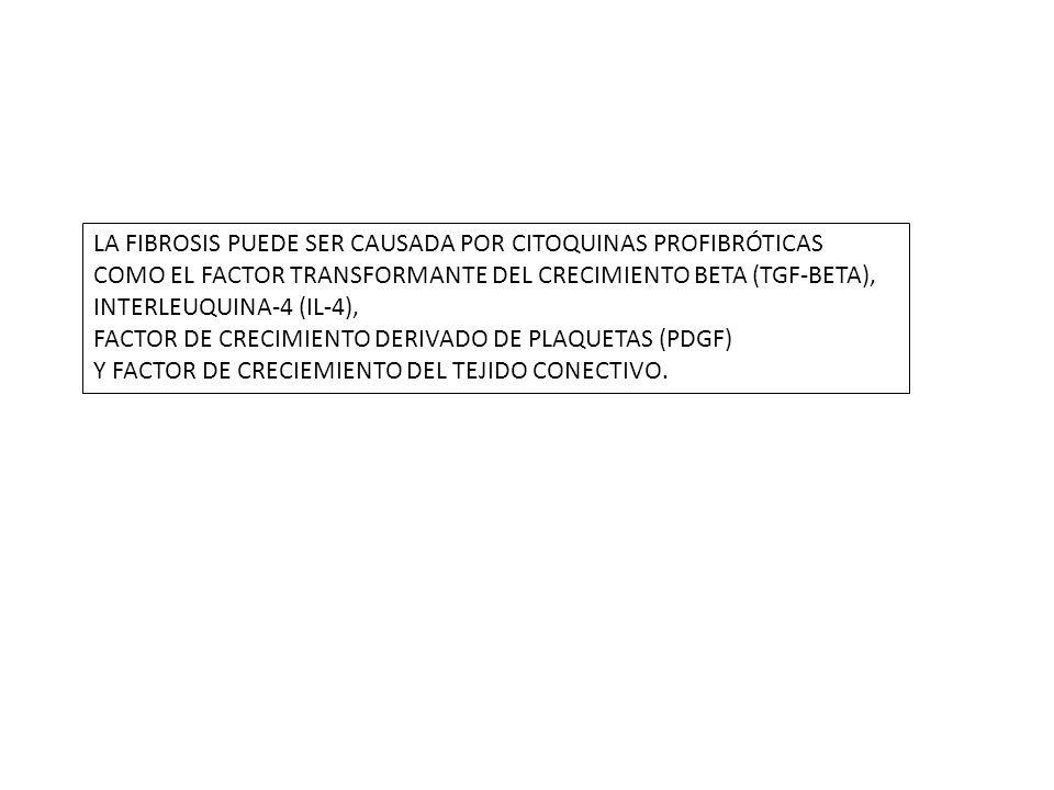 LA FIBROSIS PUEDE SER CAUSADA POR CITOQUINAS PROFIBRÓTICAS COMO EL FACTOR TRANSFORMANTE DEL CRECIMIENTO BETA (TGF-BETA), INTERLEUQUINA-4 (IL-4), FACTOR DE CRECIMIENTO DERIVADO DE PLAQUETAS (PDGF) Y FACTOR DE CRECIEMIENTO DEL TEJIDO CONECTIVO.
