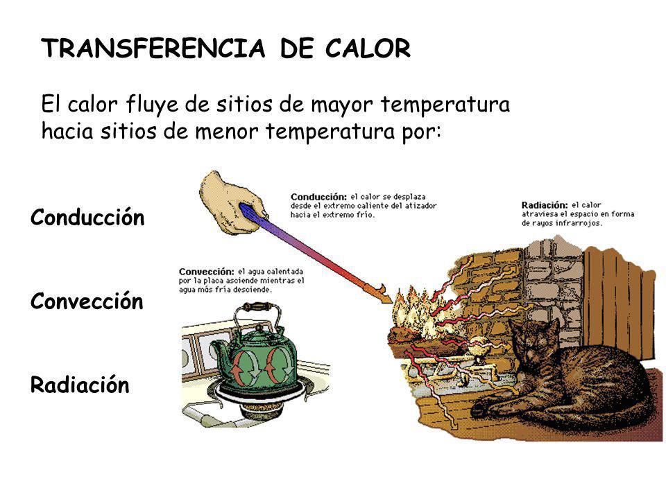 TRANSFERENCIA DE CALOR El calor fluye de sitios de mayor temperatura hacia sitios de menor temperatura por: Conducción Convección Radiación