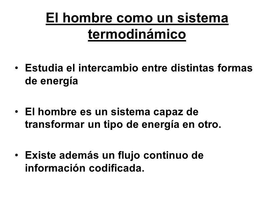 El hombre como un sistema termodinámico Estudia el intercambio entre distintas formas de energía El hombre es un sistema capaz de transformar un tipo