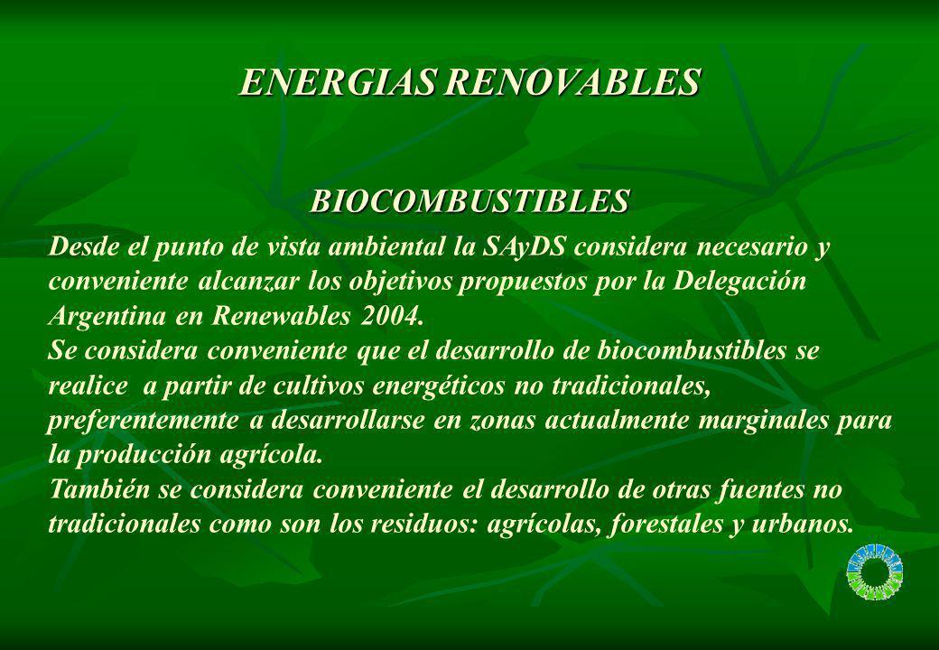 ENERGIAS RENOVABLES Desde el punto de vista ambiental la SAyDS considera necesario y conveniente alcanzar los objetivos propuestos por la Delegación A