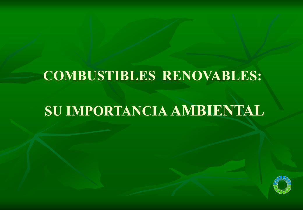 COMBUSTIBLES RENOVABLES: SU IMPORTANCIA AMBIENTAL