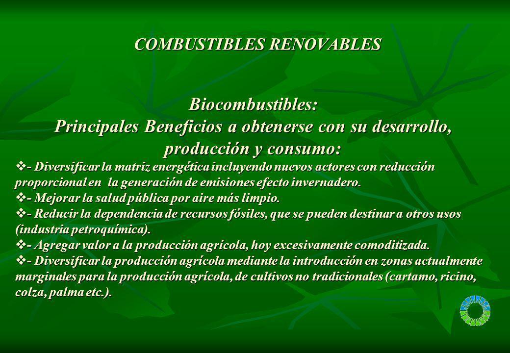 COMBUSTIBLES RENOVABLES COMBUSTIBLES RENOVABLES Biocombustibles: Principales Beneficios a obtenerse con su desarrollo, producción y consumo: - Diversi