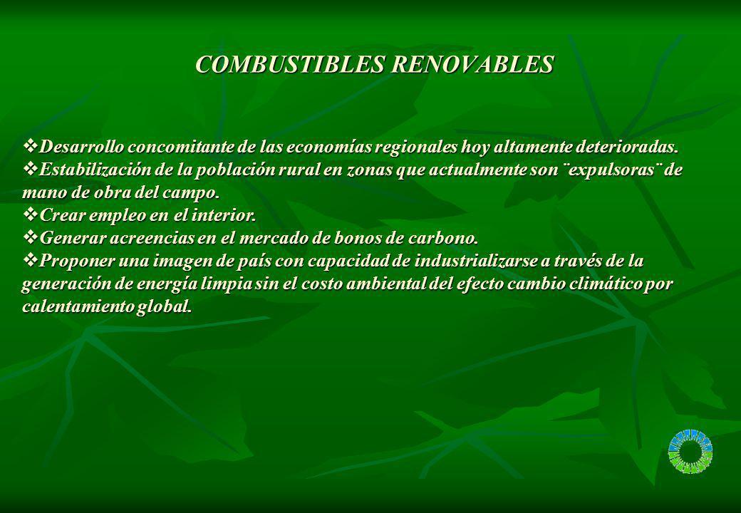 COMBUSTIBLES RENOVABLES COMBUSTIBLES RENOVABLES Desarrollo concomitante de las economías regionales hoy altamente deterioradas. Desarrollo concomitant