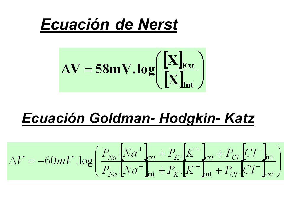 Ecuación de Nerst Ecuación Goldman- Hodgkin- Katz