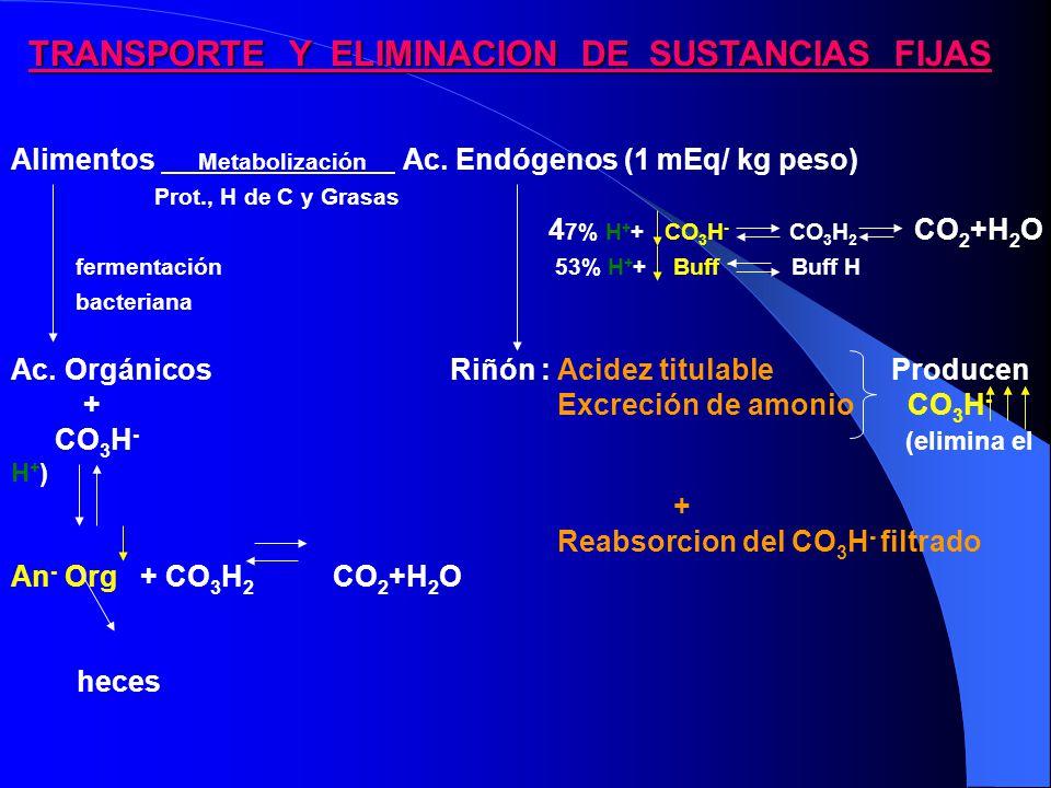 TRANSPORTE Y ELIMINACION DE SUSTANCIAS FIJAS Alimentos Metabolización Ac.