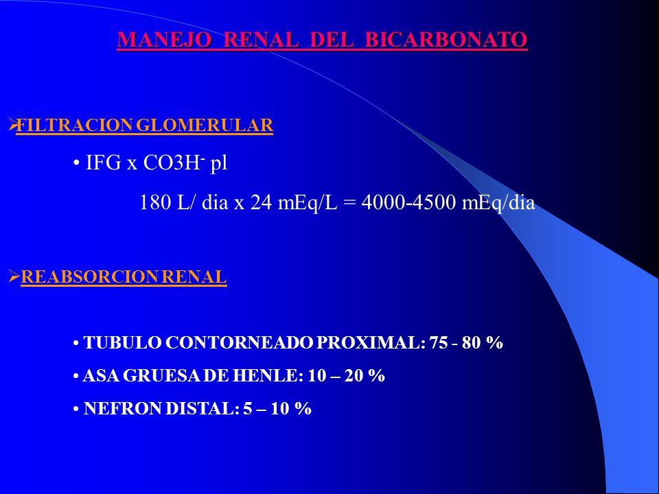 MANEJO RENAL DEL BICARBONATO FILTRACION GLOMERULAR IFG x CO3H - pl 180 L/ dia x 24 mEq/L = 4000-4500 mEq/dia REABSORCION RENAL TUBULO CONTORNEADO PROXIMAL: 75 - 80 % ASA GRUESA DE HENLE: 10 – 20 % NEFRON DISTAL: 5 – 10 %