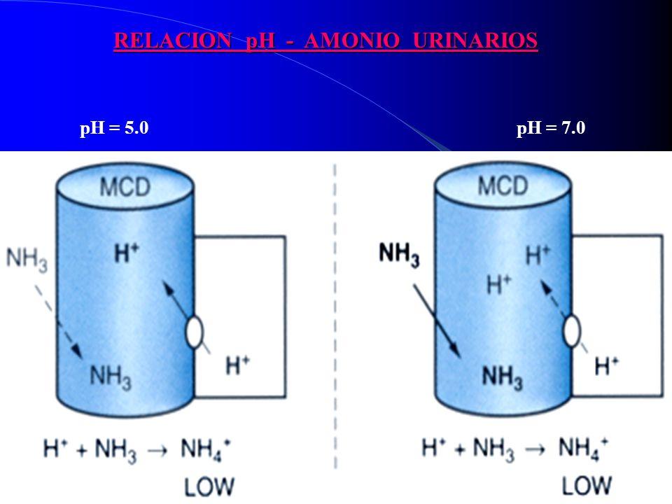 RELACION pH - AMONIO URINARIOS pH = 5.0 pH = 7.0