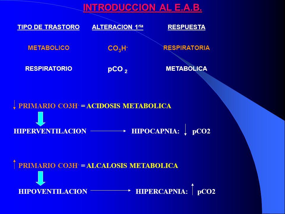 INTRODUCCION AL E.A.B.