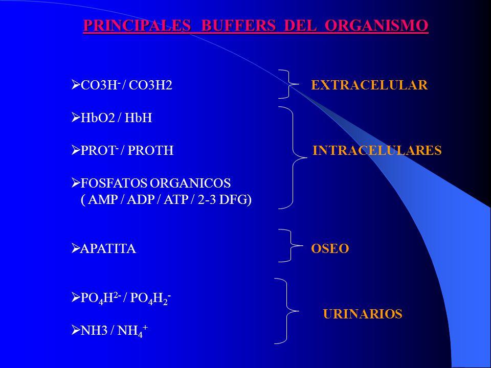 PRINCIPALES BUFFERS DEL ORGANISMO CO3H - / CO3H2 EXTRACELULAR HbO2 / HbH PROT - / PROTH INTRACELULARES FOSFATOS ORGANICOS ( AMP / ADP / ATP / 2-3 DFG) APATITA OSEO PO 4 H 2- / PO 4 H 2 - URINARIOS NH3 / NH 4 +