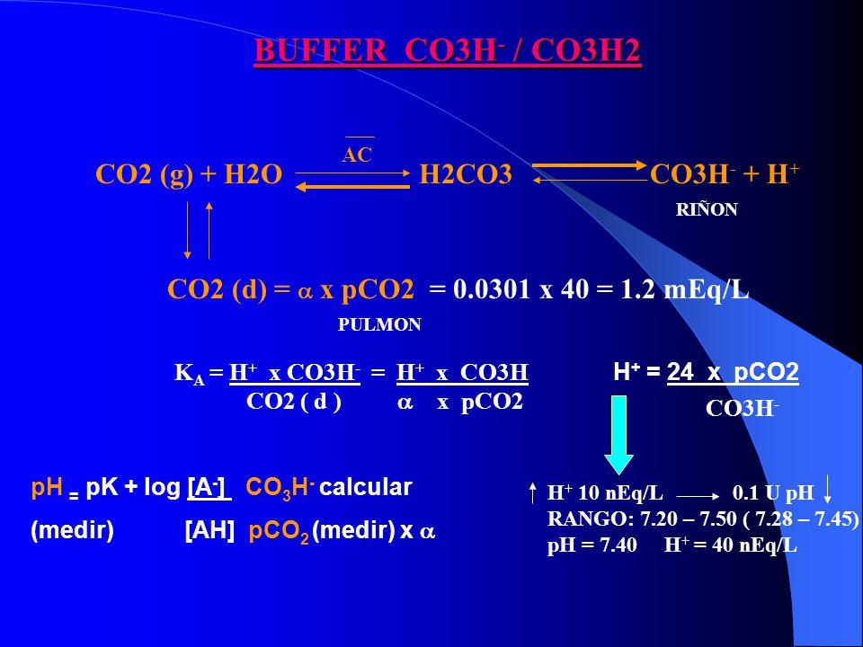 BUFFER CO3H - / CO3H2 CO2 (g) + H2OH2CO3 CO3H - + H + AC pH = pK + log [A - ] CO 3 H - calcular (medir) [AH] pCO 2 (medir) x K A = H + x CO3H - = H + x CO3H CO2 ( d ) x pCO2 CO2 (d) = x pCO2 = 0.0301 x 40 = 1.2 mEq/L H + = 24 x pCO2 CO3H - RIÑON PULMON H + 10 nEq/L 0.1 U pH RANGO: 7.20 – 7.50 ( 7.28 – 7.45) pH = 7.40 H + = 40 nEq/L