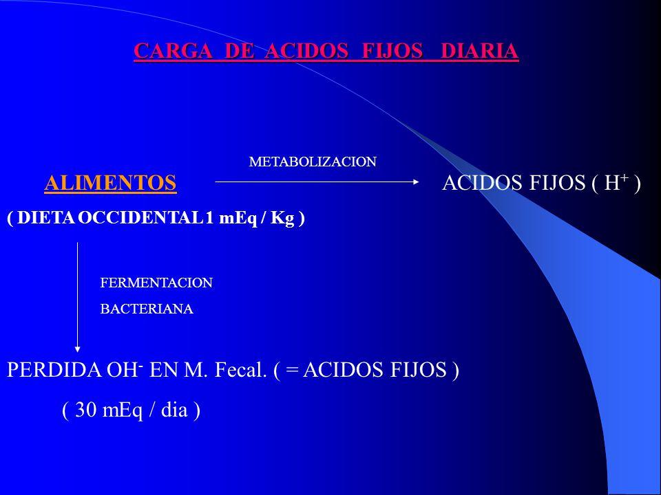 CARGA DE ACIDOS FIJOS DIARIA ALIMENTOS ( DIETA OCCIDENTAL 1 mEq / Kg ) METABOLIZACION ACIDOS FIJOS ( H + ) FERMENTACION BACTERIANA PERDIDA OH - EN M.