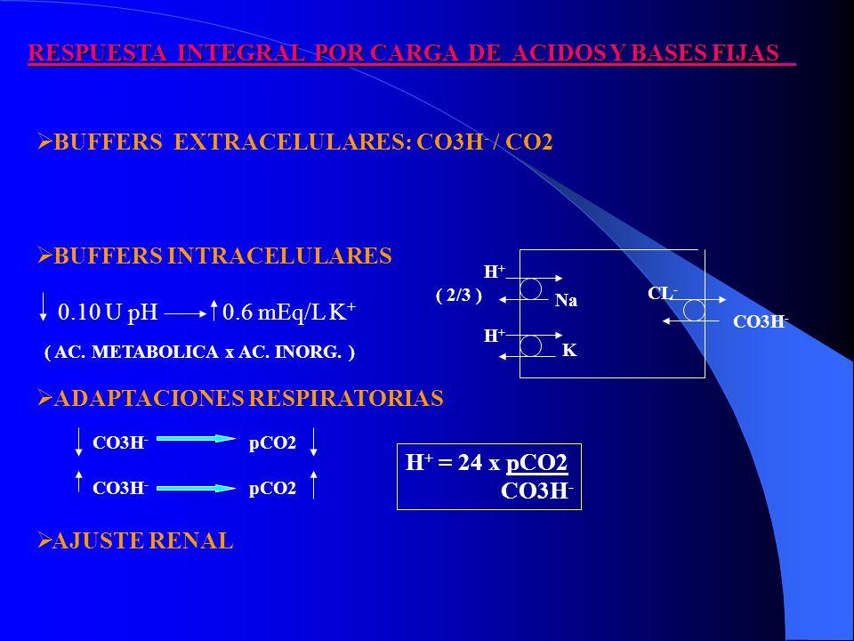 RESPUESTA INTEGRAL POR CARGA DE ACIDOS Y BASES FIJAS BUFFERS EXTRACELULARES: CO3H - / CO2 BUFFERS INTRACELULARES ADAPTACIONES RESPIRATORIAS AJUSTE RENAL ( AC.