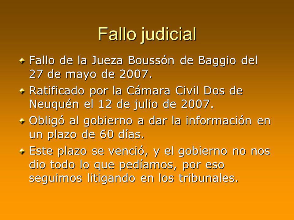 Fallo judicial Fallo de la Jueza Boussón de Baggio del 27 de mayo de 2007. Ratificado por la Cámara Civil Dos de Neuquén el 12 de julio de 2007. Oblig