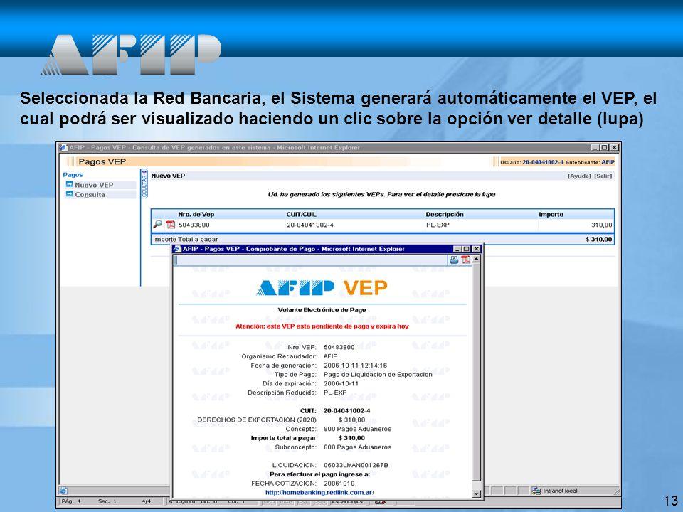 13 Seleccionada la Red Bancaria, el Sistema generará automáticamente el VEP, el cual podrá ser visualizado haciendo un clic sobre la opción ver detalle (lupa)