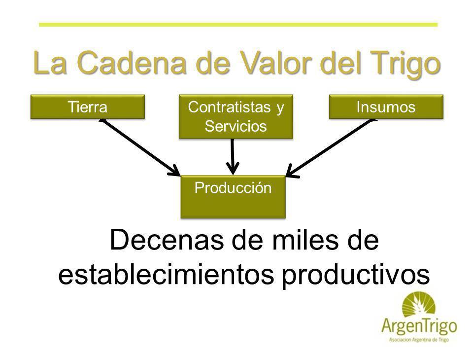 La Cadena de Valor del Trigo Producción Insumos Tierra Contratistas y Servicios Decenas de miles de establecimientos productivos