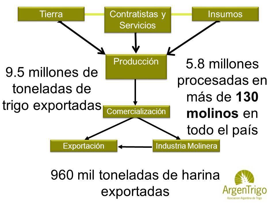 Insumos Tierra Contratistas y Servicios La Cadena de Valor del Trigo Exportación Industria Molinera Comercialización 9.5 millones de toneladas de trig