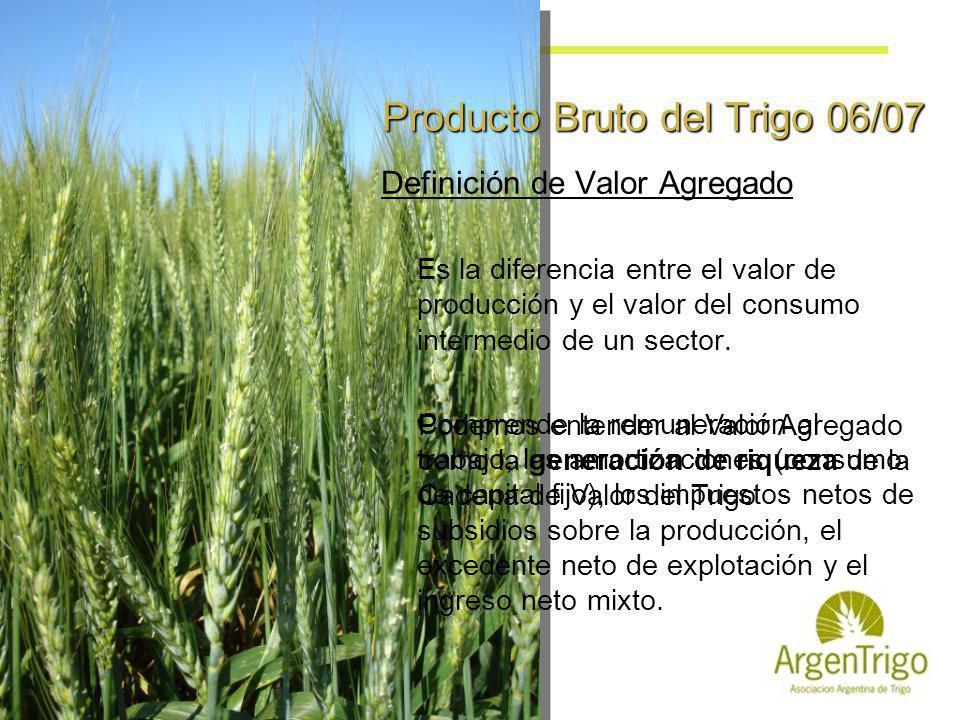Producto Bruto del Trigo 06/07 Definición de Valor Agregado Es la diferencia entre el valor de producción y el valor del consumo intermedio de un sect