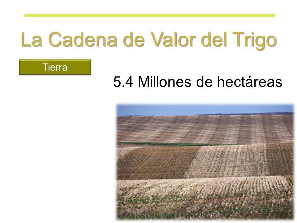 5.4 Millones de hectáreas Tierra