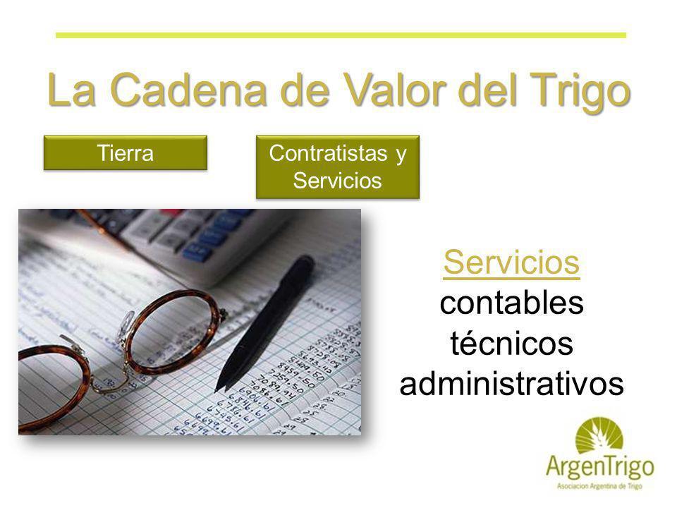 La Cadena de Valor del Trigo Tierra Contratistas y Servicios Servicios contables técnicos administrativos
