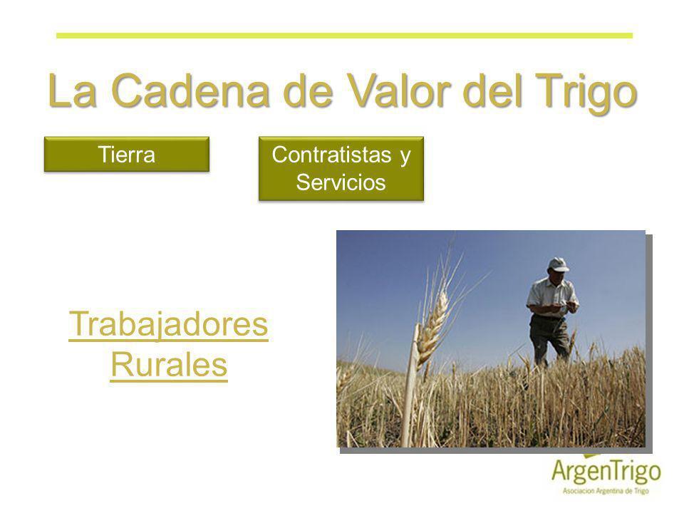 La Cadena de Valor del Trigo Tierra Contratistas y Servicios Trabajadores Rurales