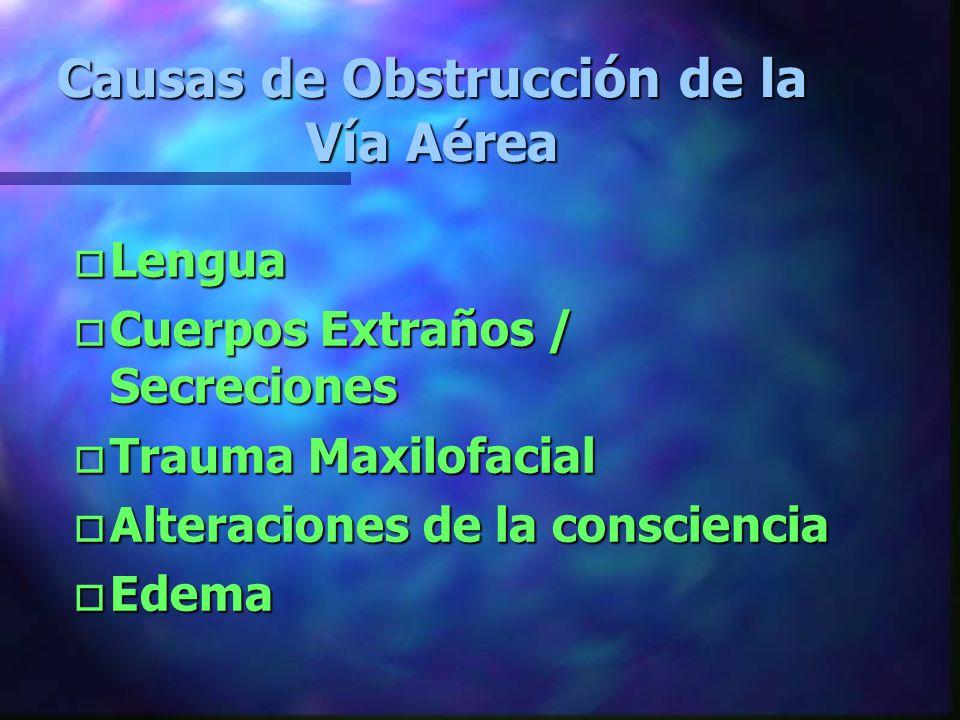 Vía Aérea y Ventilación Principales causas de Muerte o Obstrucción de la Vía Aérea o Ventilación inadecuada o Oxigenación tisular Inadecuada