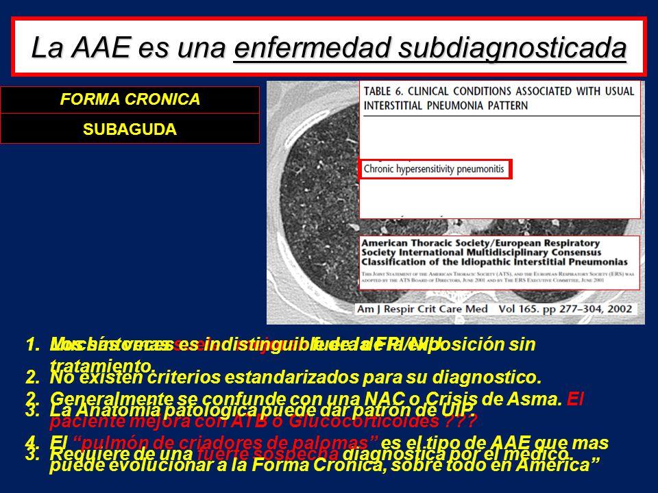 La AAE es una enfermedad subdiagnosticada FORMA AGUDA SUBAGUDA 1.Los síntomas suelen mejoran fuera de la exposición sin tratamiento. 2.Generalmente se