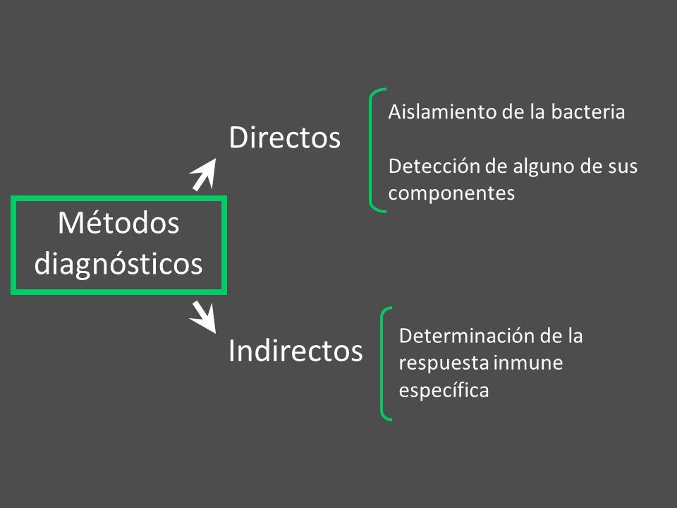 Determinación de la respuesta inmune específica Métodos diagnósticos Directos Indirectos Aislamiento de la bacteria Detección de alguno de sus compone