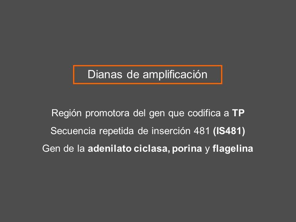 Región promotora del gen que codifica a TP Secuencia repetida de inserción 481 (IS481) Gen de la adenilato ciclasa, porina y flagelina Dianas de ampli