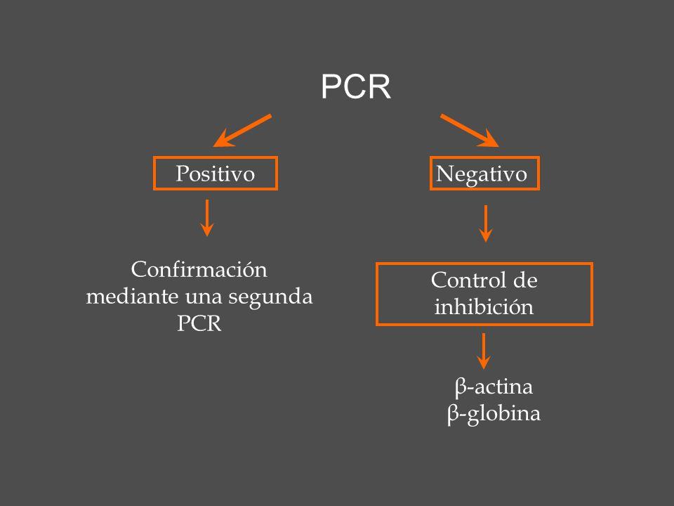 PositivoNegativo Control de inhibición Confirmación mediante una segunda PCR β-actina β-globina PCR