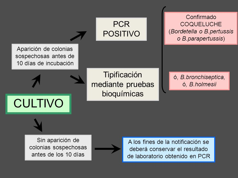 A los fines de la notificación se deberá conservar el resultado de laboratorio obtenido en PCR Sin aparición de colonias sospechosas antes de los 10 d