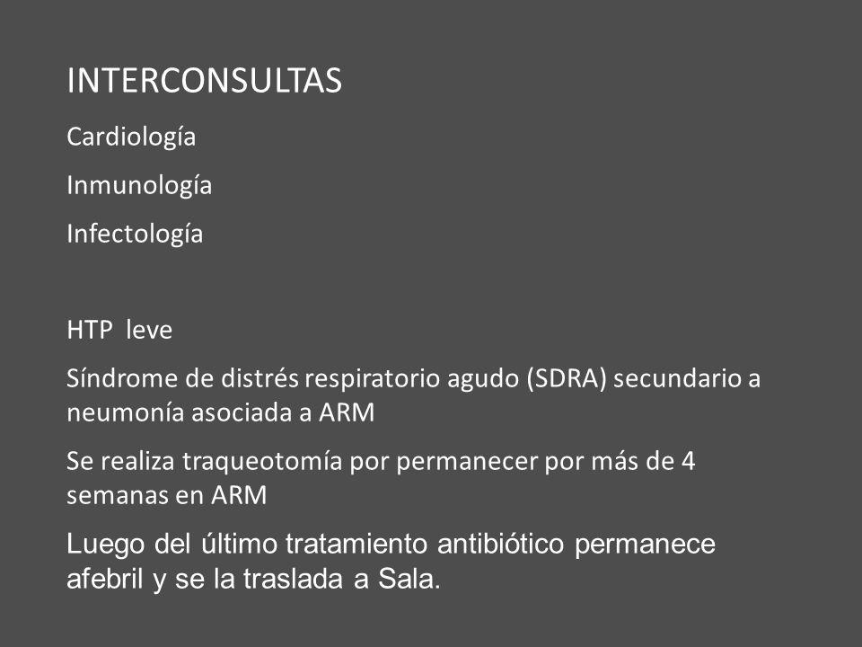 INTERCONSULTAS Cardiología Inmunología Infectología HTP leve Síndrome de distrés respiratorio agudo (SDRA) secundario a neumonía asociada a ARM Se rea