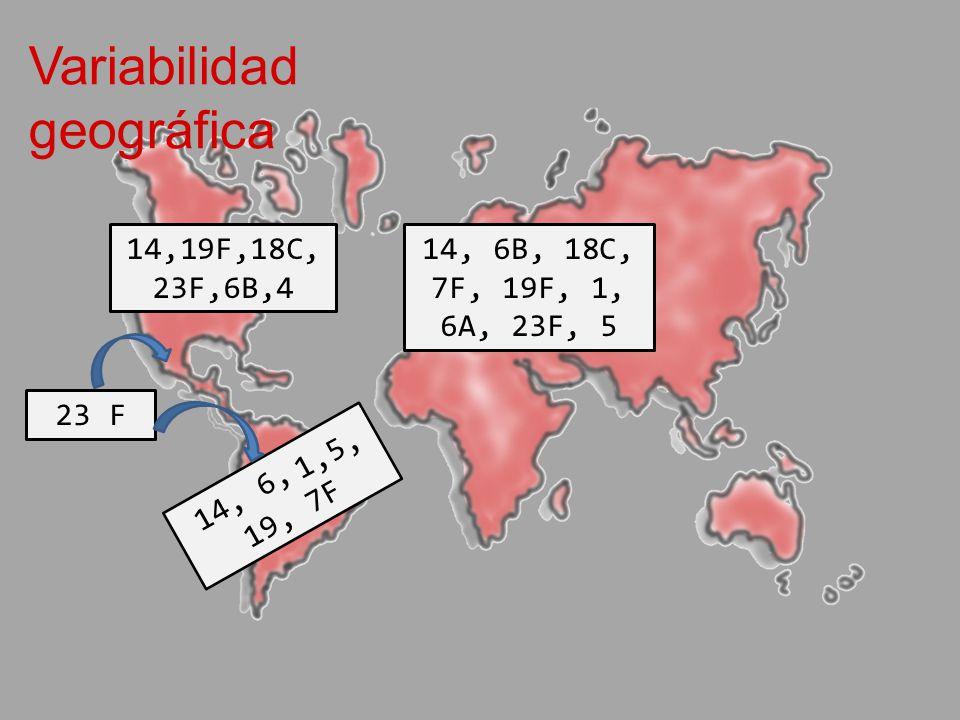 Variabilidad geográfica 14, 6,, 19, 7F 23 F 14,19F,18C, 23F,6B,4 14, 6B, 18C, 7F, 19F, 1, 6A, 23F, 5 1, 5,