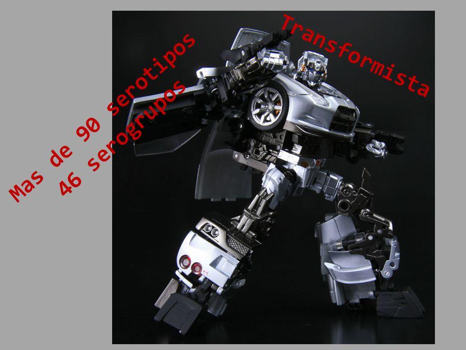 Transformista Mas de 90 serotipos 46 serogrupos