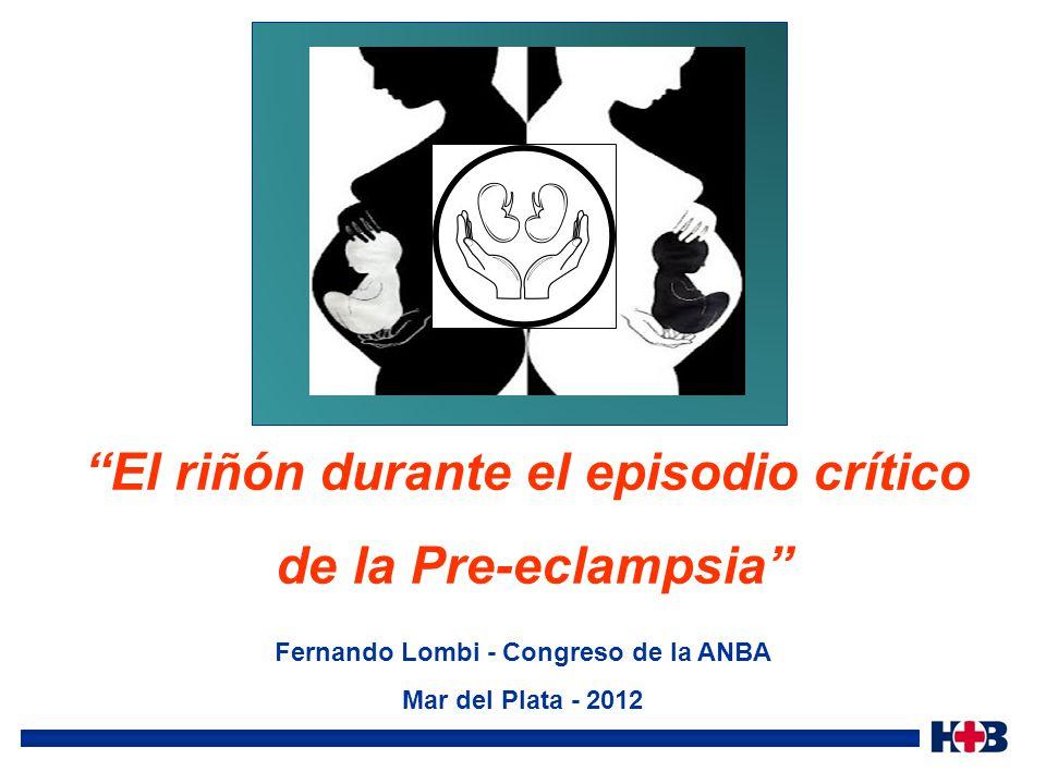 Sibai B. Imitators of severe pre-eclampsia/eclampsia. Clin Perinatol : 31 (2004) 835– 852