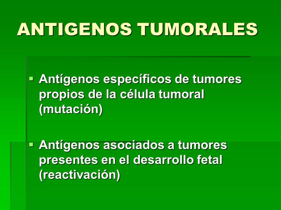 ANTIGENOS TUMORALES Antígenos específicos de tumores propios de la célula tumoral (mutación) Antígenos específicos de tumores propios de la célula tum