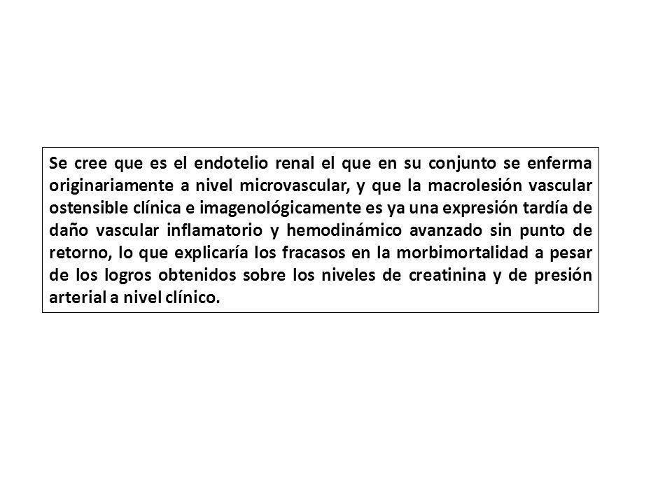 Se cree que es el endotelio renal el que en su conjunto se enferma originariamente a nivel microvascular, y que la macrolesión vascular ostensible clí