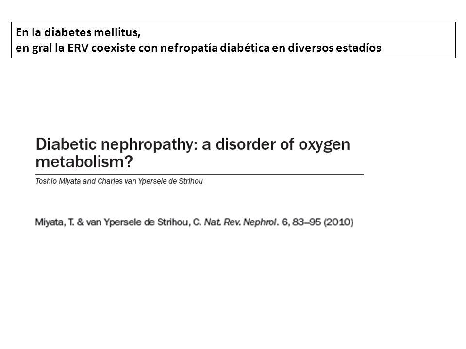 En la diabetes mellitus, en gral la ERV coexiste con nefropatía diabética en diversos estadíos