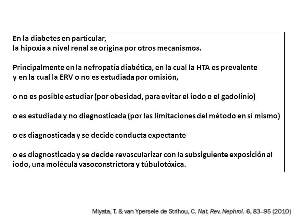 En la diabetes en particular, la hipoxia a nivel renal se origina por otros mecanismos. Principalmente en la nefropatía diabética, en la cual la HTA e