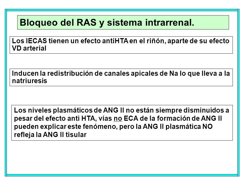 Bloqueo del RAS y sistema intrarrenal.