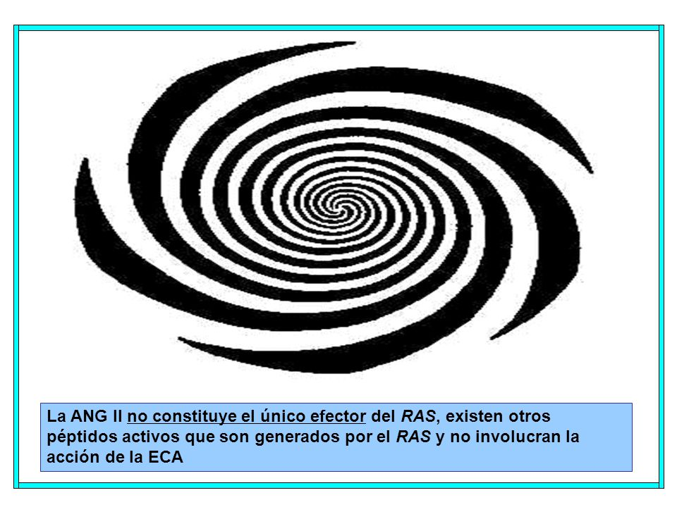 La ANG II no constituye el único efector del RAS, existen otros péptidos activos que son generados por el RAS y no involucran la acción de la ECA
