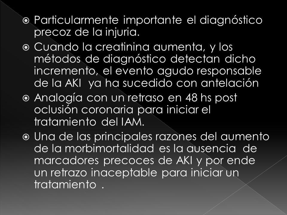 Particularmente importante el diagnóstico precoz de la injuria. Cuando la creatinina aumenta, y los métodos de diagnóstico detectan dicho incremento,